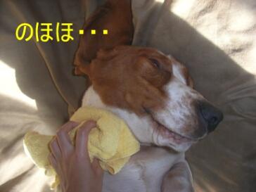 masatsu4.jpg