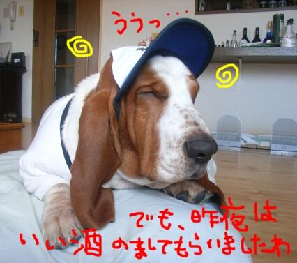 nippon1_3.jpg