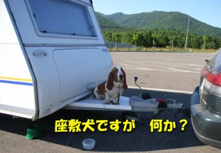 roadto3.jpg