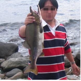 salmon3.jpg