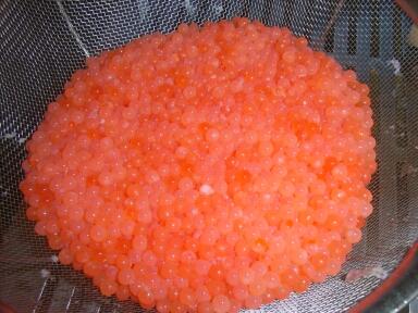salmon7.jpg