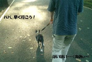 06_07_15_01.jpg