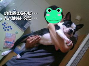 06_07_20_04.jpg