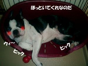 06_07_29_04.jpg