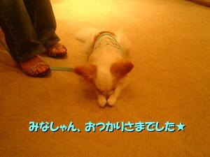 06_07_30_07.jpg