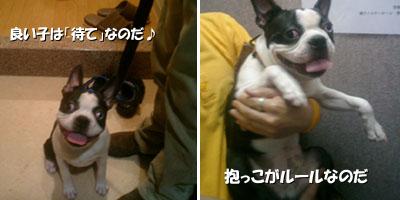 06_08_04_01.jpg