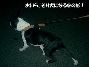 06_08_04_04.jpg