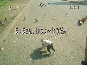 06_08_09_01.jpg