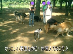 06_08_09_03.jpg