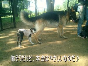 06_08_09_04.jpg