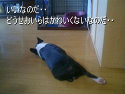 06_08_11_05.jpg