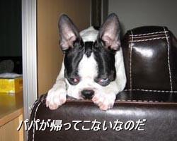 06_08_15_02.jpg