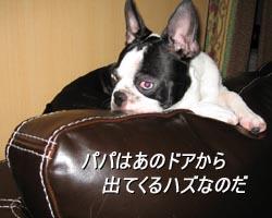 06_08_15_04.jpg