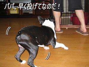 06_08_17_01.jpg