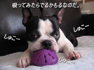06_08_18_04.jpg