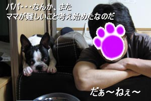 06_08_22_01.jpg