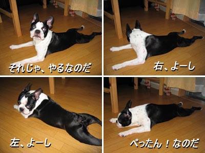 06_08_25_01.jpg