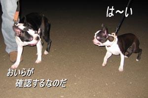 06_08_27_03.jpg