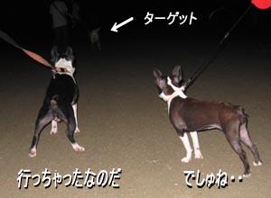 06_08_27_05.jpg