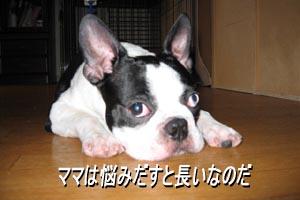 06_08_30_02.jpg