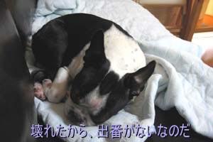 06_09_04_01.jpg