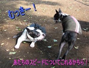 06_09_05_02.jpg