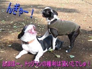 06_09_05_03.jpg