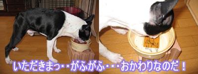 06_09_06_05.jpg