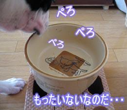 06_09_06_06.jpg