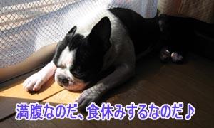 06_09_06_07.jpg