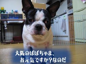 06_09_08_07.jpg