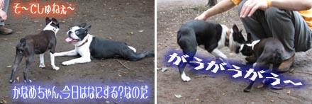 06_09_09_01.jpg