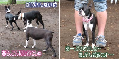 06_09_09_03.jpg