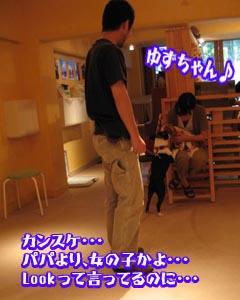 06_09_11_02.jpg