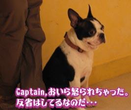 06_09_11_04.jpg