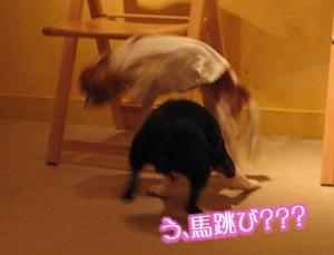 06_09_11_06.jpg