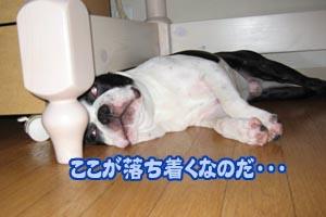 06_09_13_01.jpg