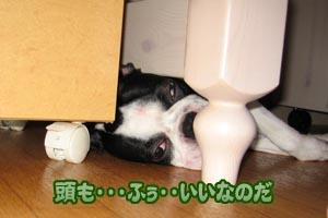 06_09_13_02.jpg
