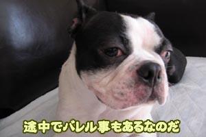 06_09_13_08.jpg