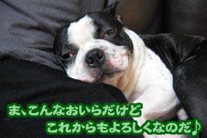 06_09_15_09.jpg