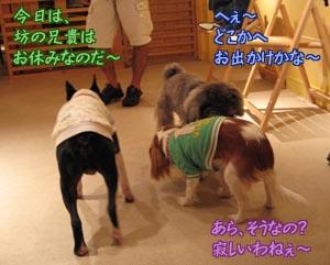 06_09_18_01.jpg