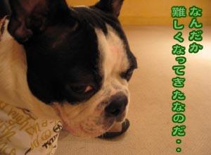 06_09_18_06.jpg