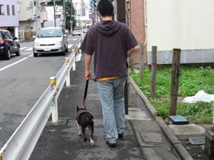 06_09_19_01.jpg