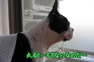 06_09_20_01.jpg