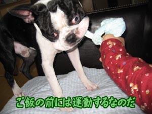 06_09_22_05.jpg