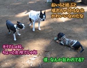 06_09_25_03.jpg