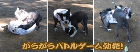 06_09_25_05.jpg