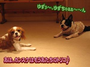 06_09_25_11.jpg