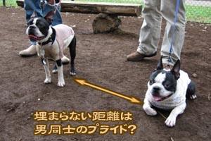 06_09_30_01.jpg