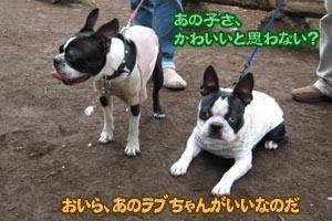 06_09_30_02.jpg